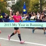 2015 My Year in Running