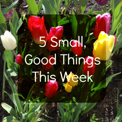 friday five 5 small good things this week giveaway erica finds. Black Bedroom Furniture Sets. Home Design Ideas